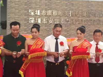 Shenzhen Anfengtai Coating Ltd